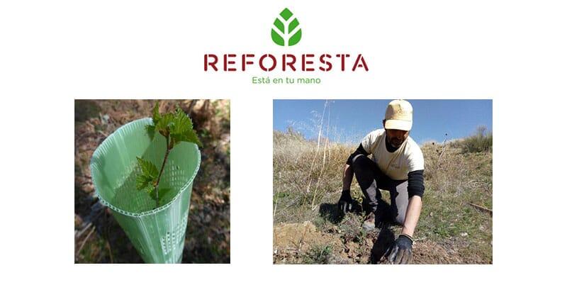 R.S.C. ENVERTEC S.L.. _ Reduciendo nuestra huella de CO2 y mejorando el Hábitat de nuestra Avifauna.