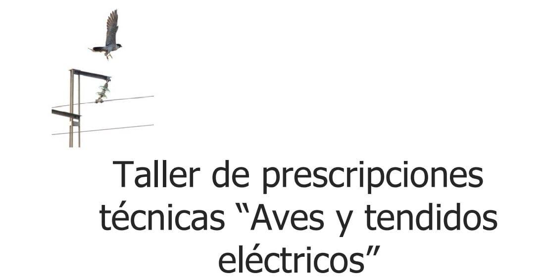 """Taller Prescripciones Técnicas """"Aves y Tendidos Eléctricos"""""""